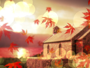 fall_background_still_800x600_jpg